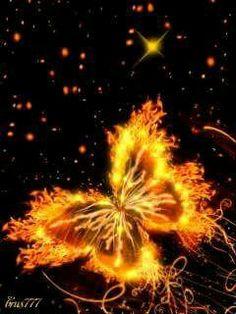 Mariposa de fuego
