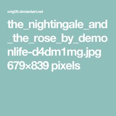 the_nightingale_and_the_rose_by_demonlife-d4dm1mg.jpg 679×839 pixels