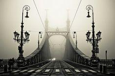 Bridges hungari, budapest, the bridge, white, beauti, place, bridges, black, photographi