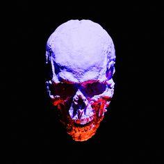 Skull Skull Reference, Dark Art Photography, Light Study, Colorful Skulls, Still Life Art, Skull Art, Sculpture Art, Skeleton, Anatomy