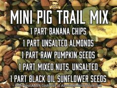 The natural diet Mini Pig Trail Mix can be used as a snack, training treats, or as a dish topping for any recipe. Store in airtight container. Potbelly Pig Care, Mini Potbelly Pigs, Mini Piglets, Pot Belly Pig Food, Pot Belly Pigs, Mini Pig Food, Pig Diet, Miniature Pigs, Teacup Pigs