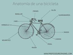 Vocabulario español bici