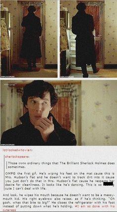 I love their relationship. Sherlock is totally Mrs. Hudson's baby boy. :)