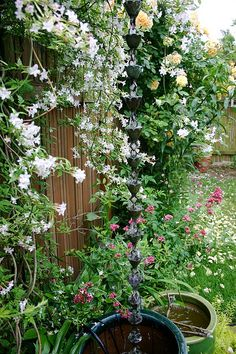 The Wall of Scent: jasmine and roses by Lelonopo, via Flickr