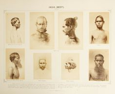 Photographic gallery of the various races of man
