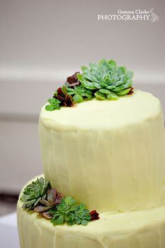 Adorable tiny, tiny succulents on this cake.