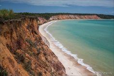 A praia do Gunga possui diversas belezas naturais em um só lugar: água cristalina, areia branca, coqueirais e falésias coloridas