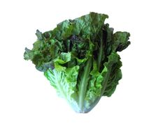 The surprising benefits of Lettuce:  - 100 grams of fresh, raw-lettuce provides 247% of daily vitamin A  - It contains many phyto-nutrients that have health promoting and disease prevention properties.  - It is a rich source of vitamin K. Vitamin K is thought to increase bone mass by promoting osteotrophic activity in the bone cells.  - Has good amounts of minerals like iron, calcium, magnesium, and potassium, which are very essential for body metabolism.