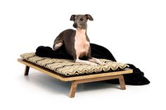 Float Platform Bed // Mid Century Modern Pet by modernistcat Decoration Palette, Horizontal Murphy Bed, Dog Furniture, Dog Houses, Dog Life, Mid-century Modern, Small Dogs, Platform Bed, Puppies