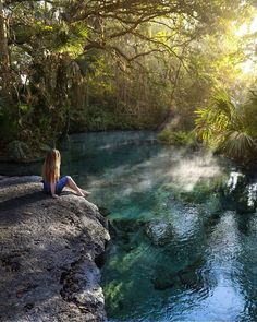 """""""Prettiness. Rock Springs at Kelly Park. Apopka, Florida. Photo by @fly_with_jenna"""""""