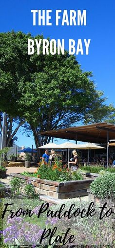 The Farm Byron Bay (NSW, Australia)  is a leader in sustainable farming and dining. Be sure to get there early to secure a table and avoid disappointment.