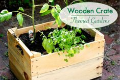Playful Learning: Wooden Crate Themed Gardens