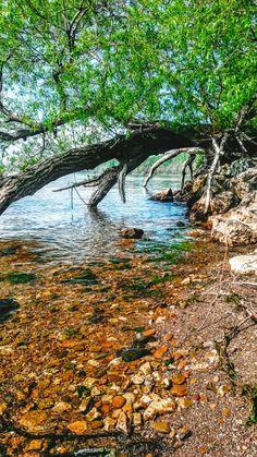 Good morning/Buenos días #nature #colorfull #water #real #eriepa #peninsula #travellakeerie #lakeerie #goerie #natural #reality #clear #WiljoelArt