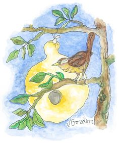 finch and gourd by Jeanne Gordon