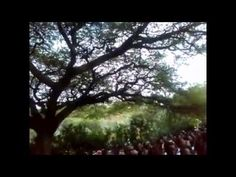 Videos from Irreecha (Oromo Thanksgiving) 2014 at Hora Arsadi, Bishoftu ...