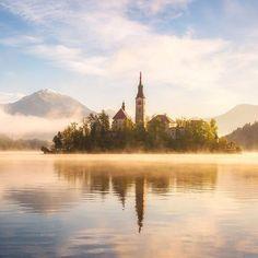 Golden Morning ....by Daniel Fleischhacker