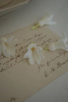Flowers on the old letter