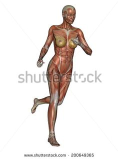 Muscular woman running isolated in white background