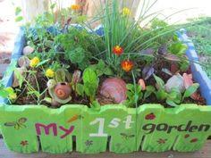 Kids salad garden in a box - what a cute idea @Beth Hicks
