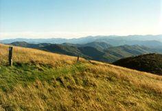 amazingly beautiful landforms, even in ohio : )Appalachian Mountains in Ohio | Appalachian Mountains