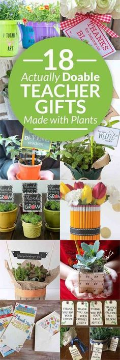 18 beautiful plant gifts for teachers with free printables, affordable teacher presents, perfect teacher appreciation centerpieces, easy teacher gifts, plant gifts, teacher appreciation gifts via @brendidblog #printables #teachergifts #gifts #diygifts