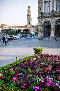 Porto in bloom