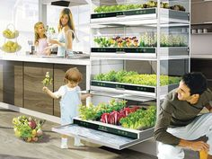 Kitchen Nano Garden. Sleek hydroponic unit lets you grow a garden in your kitchen