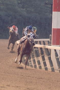 Secretariat began his 3-yr-old year with an easy win in the Bay Shore Stakes at Aqueduct. In his next start, the Gotham Stakes, he led wire-to-wire for the first time in his career.  However, in his next start, he finished 3rd in the Wood Memorial. His loss was due to a large abscess in his mouth. Because of the Wood Memorial results, some were considering Sham the top pick for the Kentucky Derby.