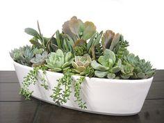 "Pastel Succulent Garden 13"" White Boat-shaped Ceramic Dish Garden Centerpiece"