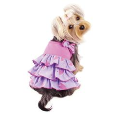 Dog Dress - Klippo Shimmery Hearts Ruffle Dog Dress with Bow Purple Dress, Pink Purple, Puppy Diapers, Really Cute Dogs, Cute Dog Clothes, Designer Dog Clothes, Girl And Dog, Dog Dresses, Heart Patterns