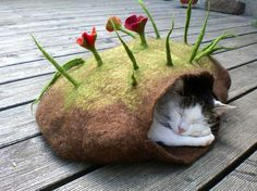my cats would love these beds!!