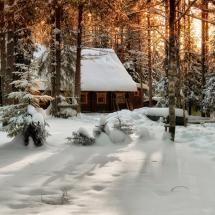 snow || Magical.....