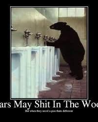 potty time bear