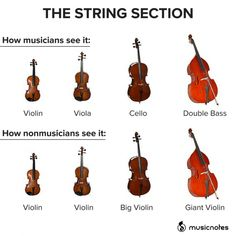 The Best Music Memes for Classical Musicians - Humor City Funny Band Memes, Music Memes Funny, Music Jokes, Band Jokes, Funny Relatable Memes, Music Humour, Musician Memes, Orchestra Humor, Memes Marvel
