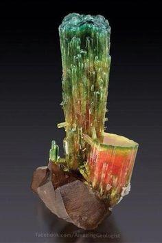 Multi colors tourmaline with smoky quartz.