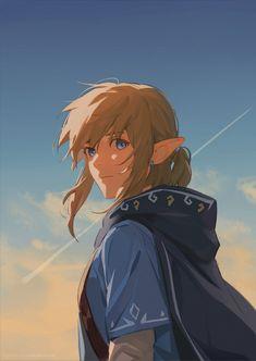 The Legend Of Zelda, Legend Of Zelda Breath, Resident Evil, Link Fan Art, Link Twilight Princess, Life Is Strange Wallpaper, Link Botw, Botw Zelda, Awsten Knight