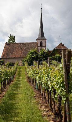 Mittelbergheim, Bas-Rhin (France) – Crédit Photo: Allan Harris (alh1) via Flickr – Licence CC BY-ND 2.0   ..rh