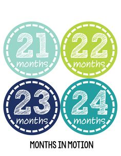 Baby Boy Monthly Baby Stickers Style #113