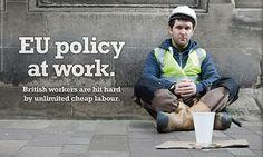 UKIP policy