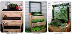 Dresser turned garden