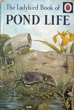 The Ladybird book of pond life (Ladybird books), Scott, Nancy in Books, Magazines Vintage Book Covers, Vintage Books, Garden Of Words, Pond Life, Ladybird Books, Writing A Book, Letter Writing, Book Authors, Life Images
