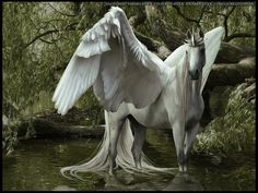 °Tranquil Gale by The-Weathered-Raven Mythical Creatures Art, Mythological Creatures, Magical Creatures, Fantasy Creatures, Beautiful Creatures, Unicorn Fantasy, Unicorn Art, Winged Horse, Unicorn Pictures
