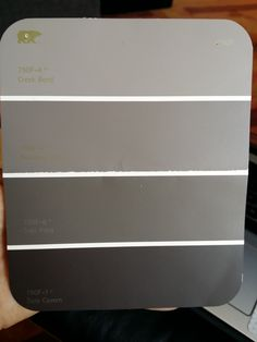 Behr paint: Lightest color (Creek Bend): Use in master bath shower area. Also use in individual bathroom.  Next lightest (Amazon Stone): use in master bath area with sink and toilet.