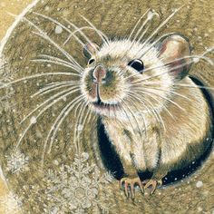 Mouse Molly by Revelle Taillon (see: http://www.etsy.com/listing/44396223/mouse-molly-giclee-art-print-can-be#)
