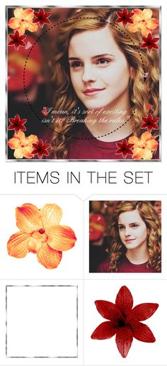 """""""Taken icon for @princesscadence7"""" by undeaddemon18 ❤ liked on Polyvore featuring art, harrypotter, Gryffindor, hermione and bunnyhptaglist"""