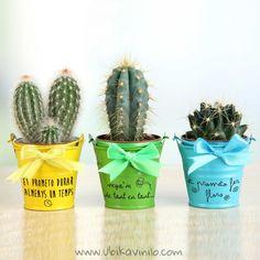 Succulent Pots, Cacti And Succulents, Cactus Plants, Planter Pots, Fiesta Theme Party, Painted Clay Pots, Cement Pots, Scrapbook Designs, Cement Planters