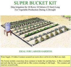 Organic Gardening Ideas Gravity Drip Bucket Irrigation Systems for Vegetable Gardens Enhance Food Security for the Food Insecure Organic Gardening, Gardening Tips, Vegetable Gardening, Drip Irrigation, Irrigation Systems, Garden Irrigation System, Rainwater Harvesting, Water Systems, Water Garden