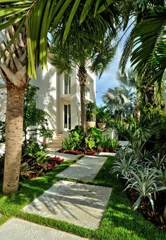 tropical entrance to a large house with planters at the door | adamchristopherdesign.co.uk