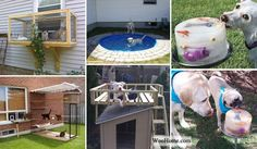 Top 20 Brilliant DIY Backyard Projects and Tips for Your Pets - Neue Ideen Small Backyard Landscaping, Fire Pit Backyard, Portable Fire Pits, Ideas Prácticas, Backyard Projects, Garden Projects, Diy Projects, Wooden Decks, Lego House