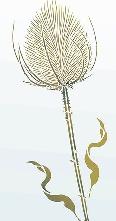 Thistle Drawing | Above - Giant Wild Teasel Stencil 1 in Olive Grove, Verbena, Hedgerow ...